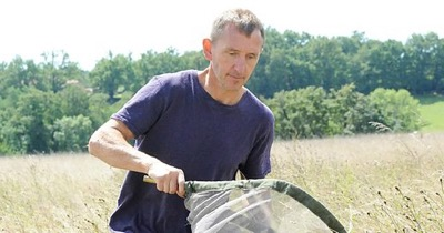 Prof. Dave Goulson catching bees