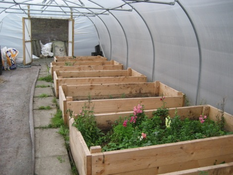 Raised beds at Rotters 2