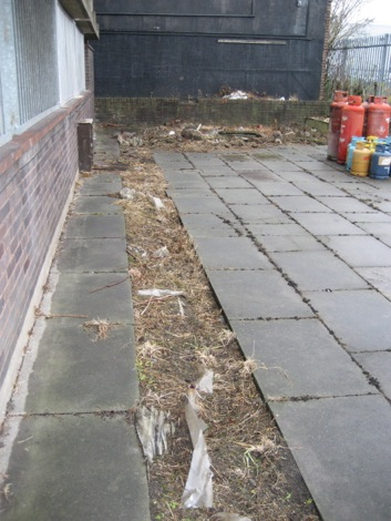 Turn these paving slabs into a growing area 1