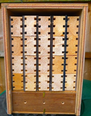 Multiple solitary bee observation nest box